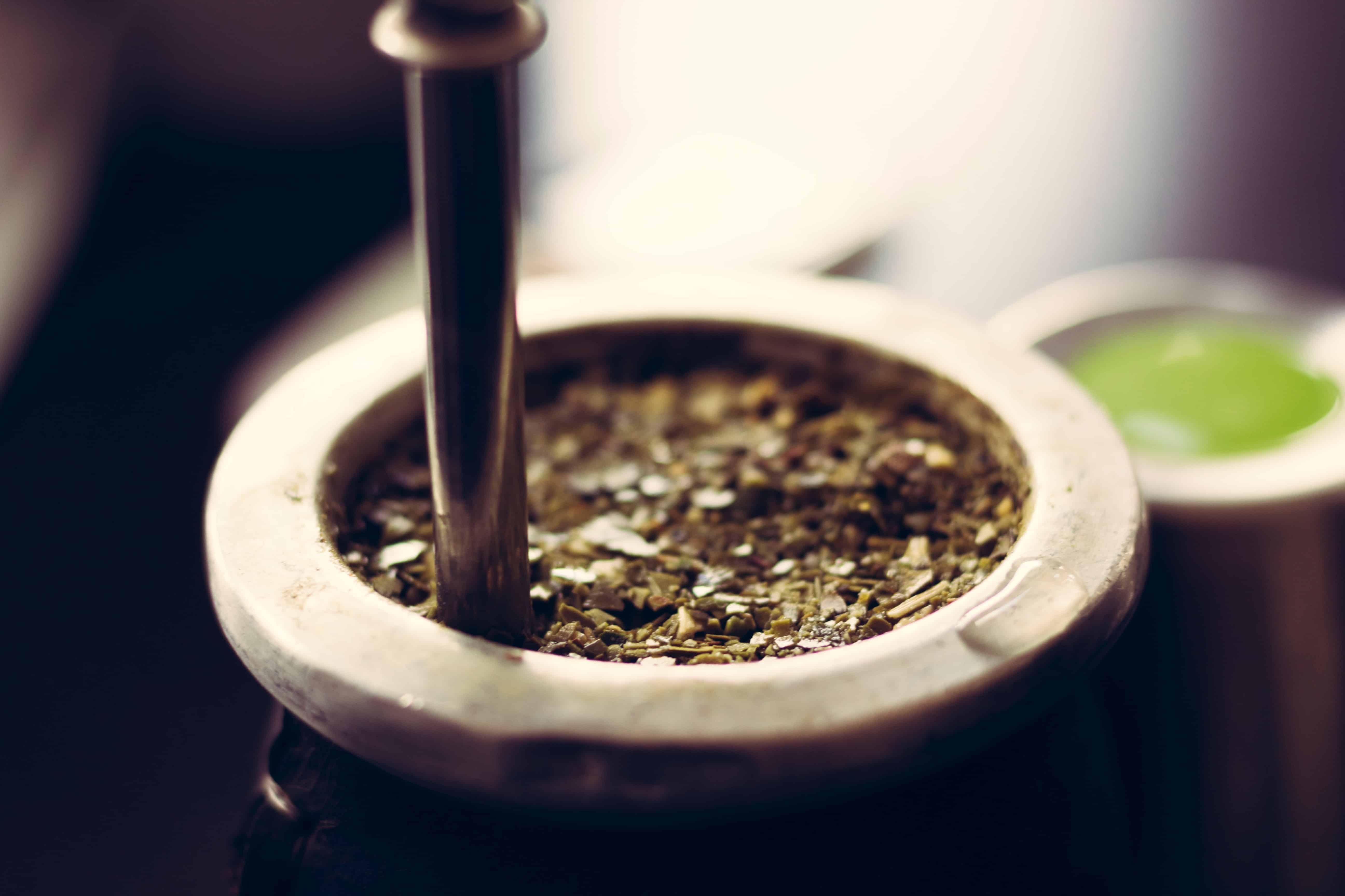 Mate Tee: Test & Empfehlungen (01/20)