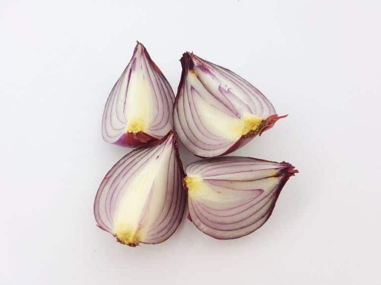 Viertel einer Zwiebel auf einer weißen Oberfläche