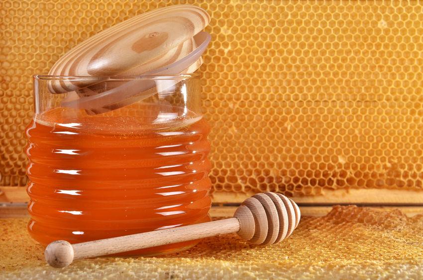 Honiglöffel-1