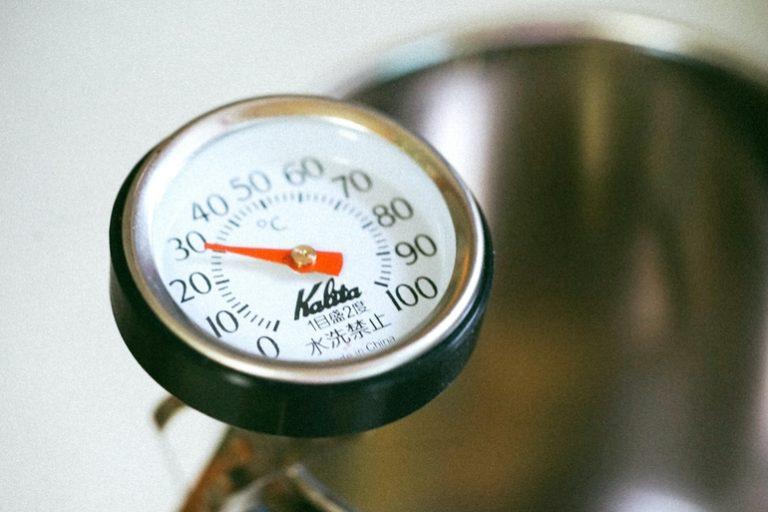 fleischthermometer-test
