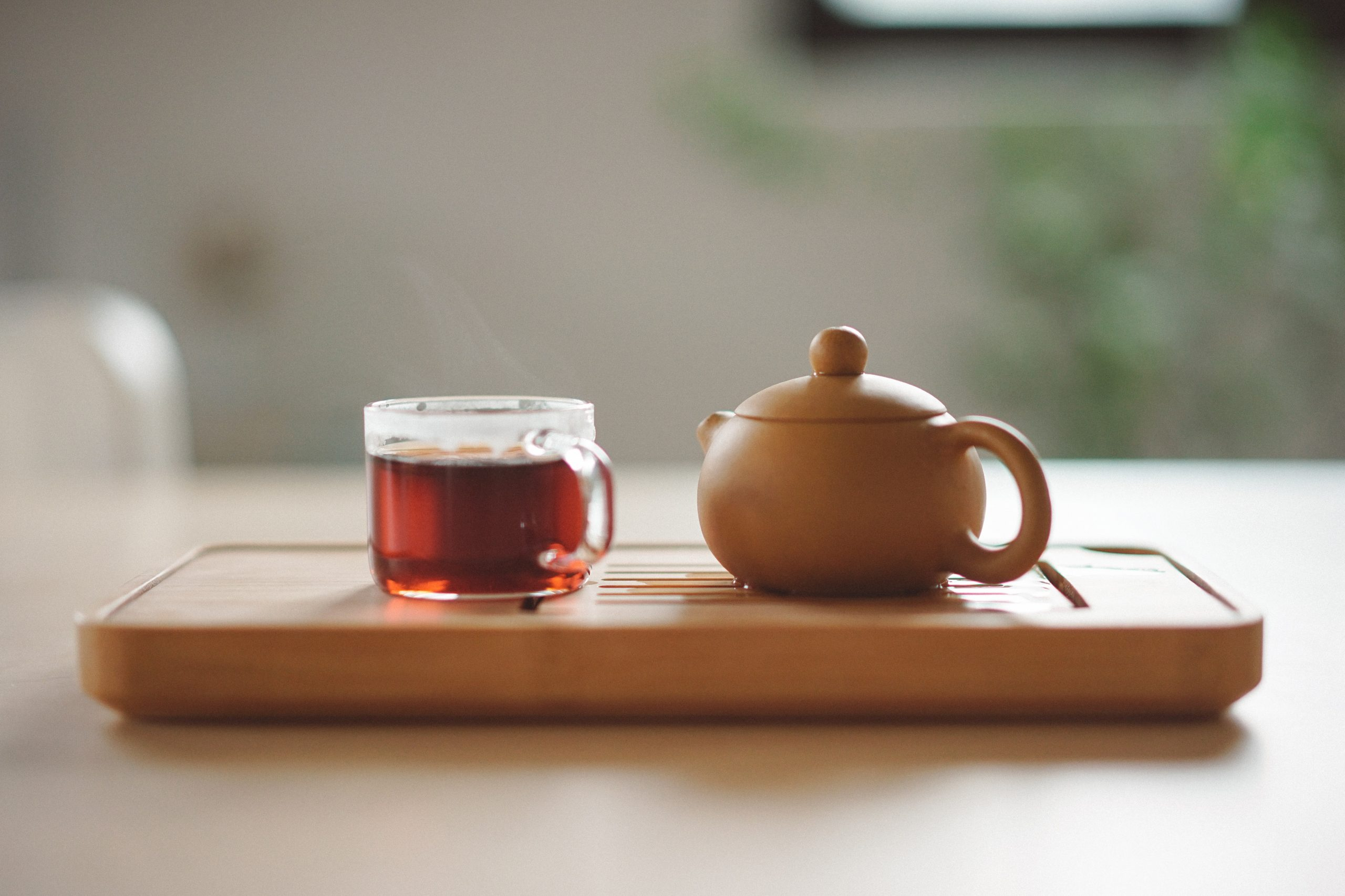 Bio Tee: Test & Empfehlungen (04/21)